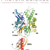 protein _science_cover